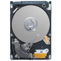 "DELL 2TB 3.5"" NLSAS 7.2K RPM, 12GBPS, NON HOT PLUG HARD DRIVE"