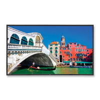 "NEC V423 42"" Commercial LED Display"